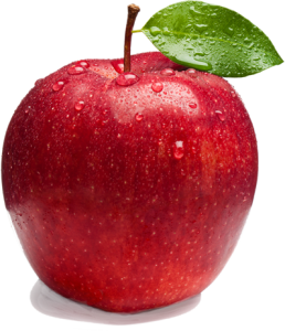 Robyn Goldberg's Logo - Healthy Eating Apple