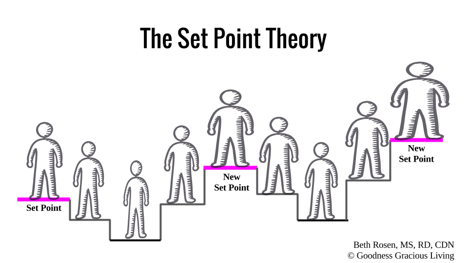 what is the set point theory of diet